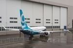 Airlines need to complete inspections on 737 MAX panels