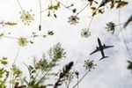 Ban short-haul flights for climate?