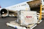 Kuehne & Nagel buys Asian logistics firm Apex